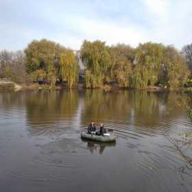 Мешканці Шепетівки повідомили про масову загибель риби