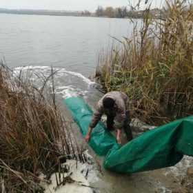 У водосховище на річці Полква в межах смт Теофіполь випустили 11 тис. екземплярів молоді риби