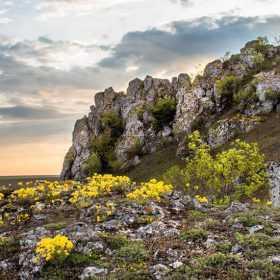 На Хмельниччині розробили проєкт створення комплексної пам'ятки природи