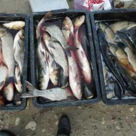 На Хмельниччині затримали рибалок
