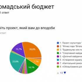 У Кам'янці проголосували за проекти громадського бюджету