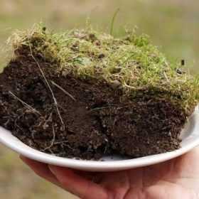 У Славуті майже всемеро збільшили орендну плату за землю