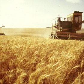 Хмельниччина отримала понад 105,1 млн грн на підтримку сільського господарства