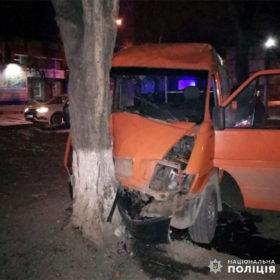 ДТП у Кам'янці-Подільському: «Volkswagen» на швидкості врізався у дерево