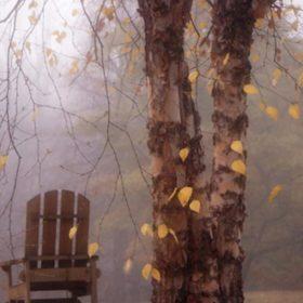 хмарна осінь