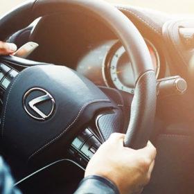 авто, руль, руки