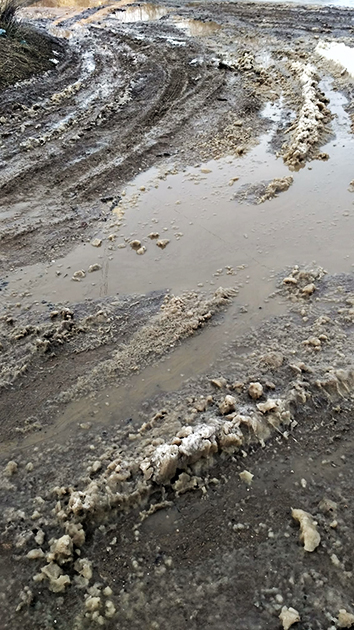 Хмельницьке болото