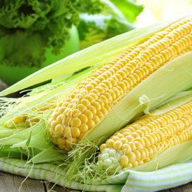 Найбільше зернових з Хмельниччини експортували до Китаю