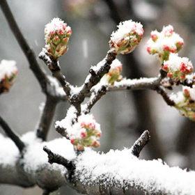 В середині березні на Хмельниччині відчутно відчуватиметься подих зими.