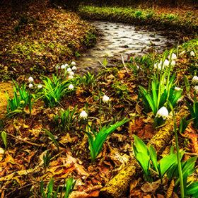Якщо 29 березня була тепла, сонячна погода, то і весна вся обіцяла бути теплою.