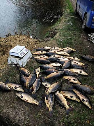 браконьєрство риба
