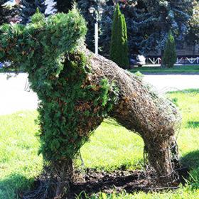 Всохлі живі скульптури у формі слонів
