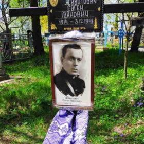 Євген Животович