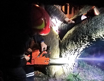 Рятувальники звільняють дитину, яка застрягла у дереві