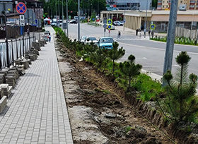 велодоріжка проти зеленої зони