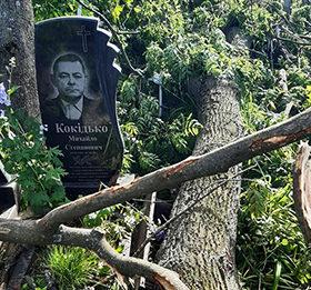 повалені дерева на кладовищі