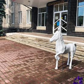 коні біля міської ради Славути