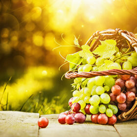 Green and red grapes in solar beams
