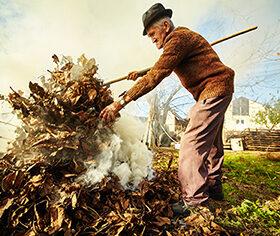 Senior farmer cleaning his garden of fallen leaves, burning them in a pile