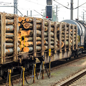 wagon of railroad loaded with wood. freight train. freight rail