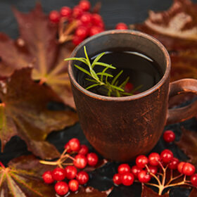 Mug or cup of hot viburnum tea on black background, autumn maple red leaves and viburnum berries on white background. Winter. Christmas. Cold season.