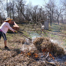 Woman farmer spring cleaning, burning cut branches and fallen leaves in the backyard