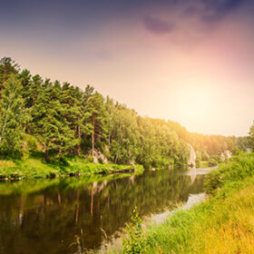 Forest river at sunset. Beautiful summer landscape