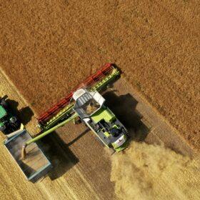 комбайн збирає в полі зернові