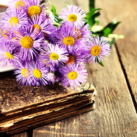 Old book with beautiful flowers and cup of tea on wooden table close up