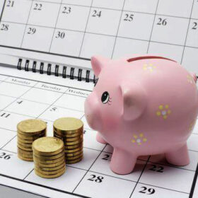 календар свиня монети